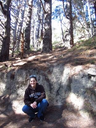 "Where the hobbits tumbled down the hillside in their ""shortcut t mushrooms!"""