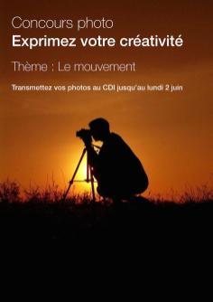 Affiche concours photo Théo 2014