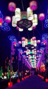 Festival des lanternes - Gaillac