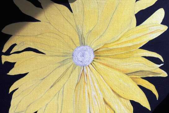 Yellow Daisy (4)