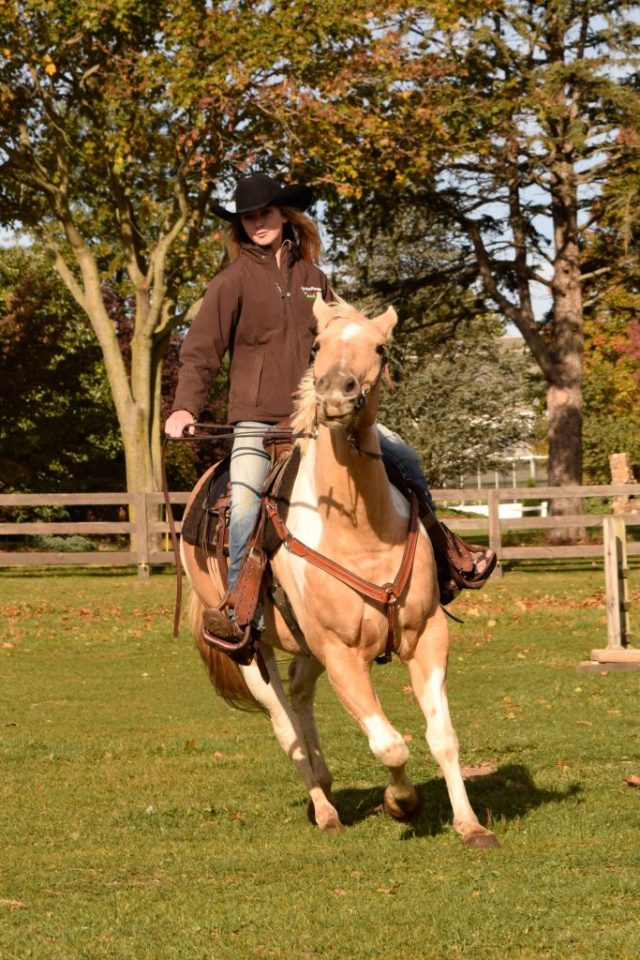 Young woman on horseback on a farm is another good photo subject for beginners.