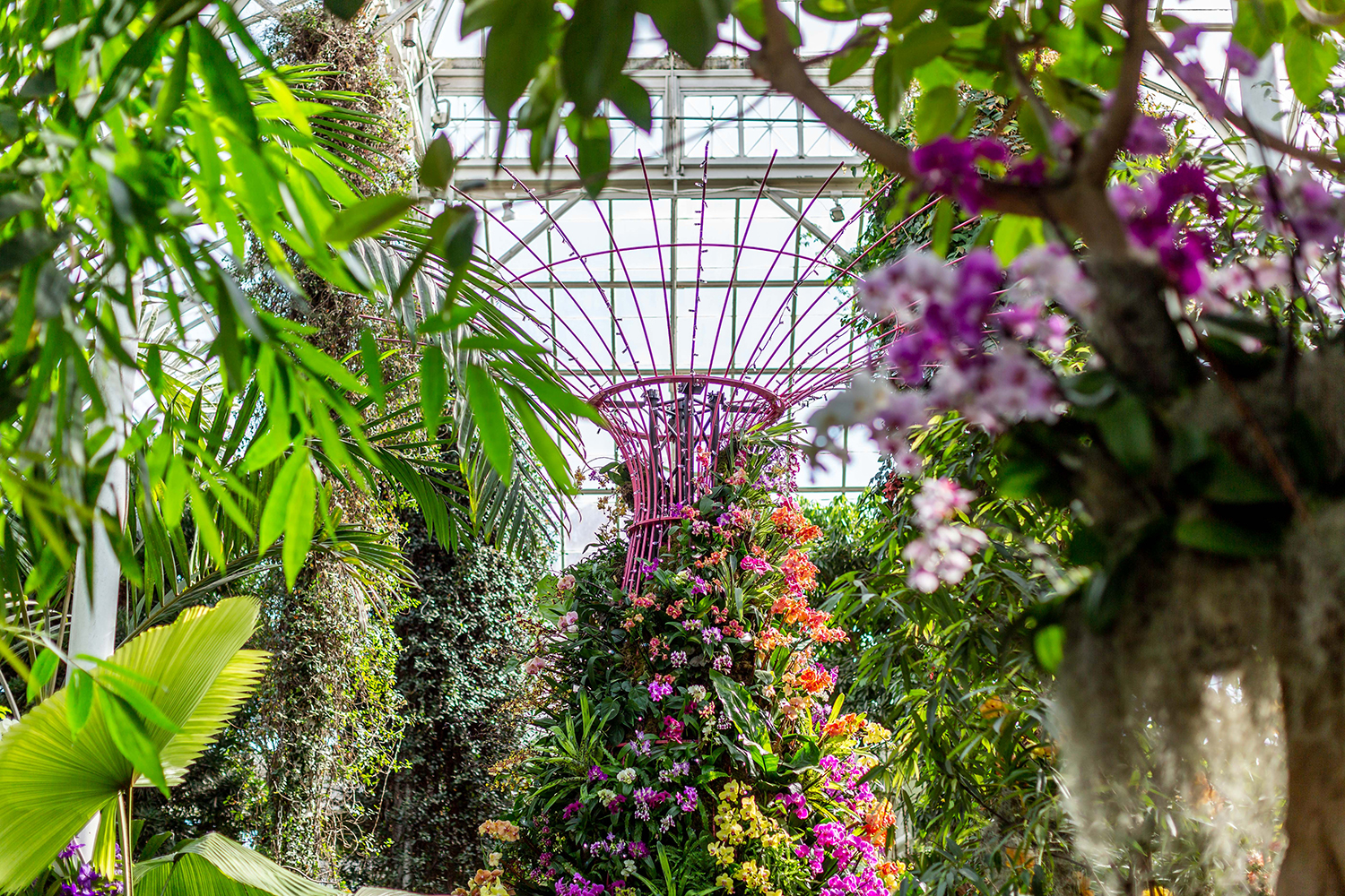 Supertree draped with orchids at the NYBG Orchid Show in NYC
