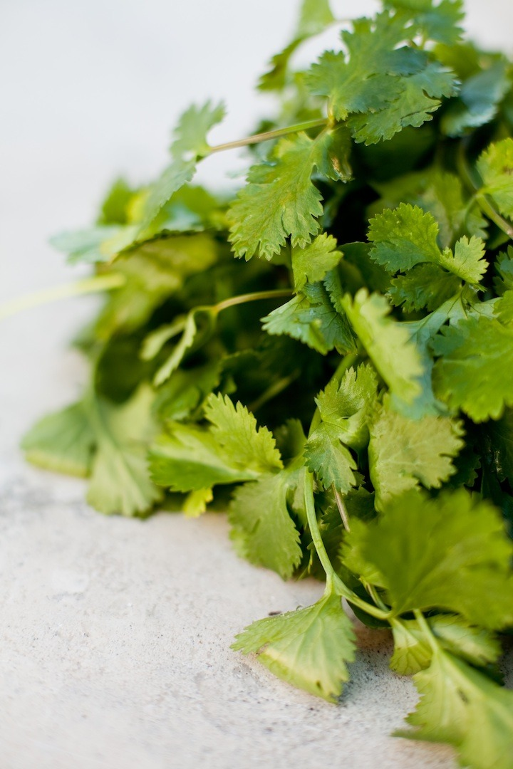 One bunch of cilantro to be used as garnish for Mexican Street Corn from The Organic Kitchen
