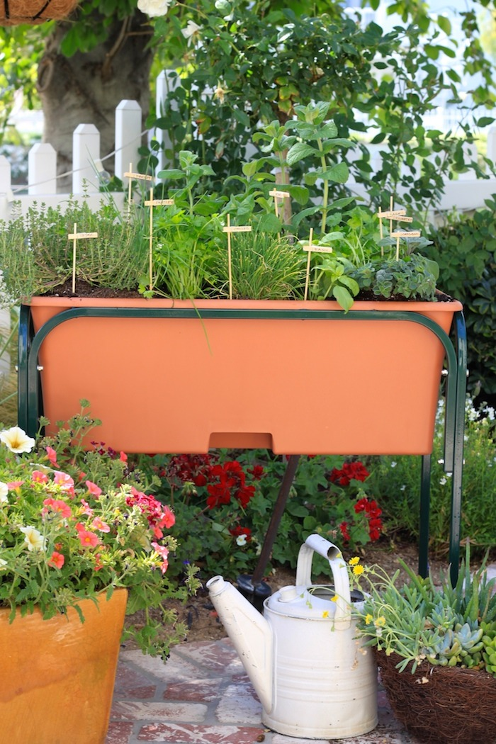 How To Plant A Raised Bed Herb Garden Recipes Using Herbs The