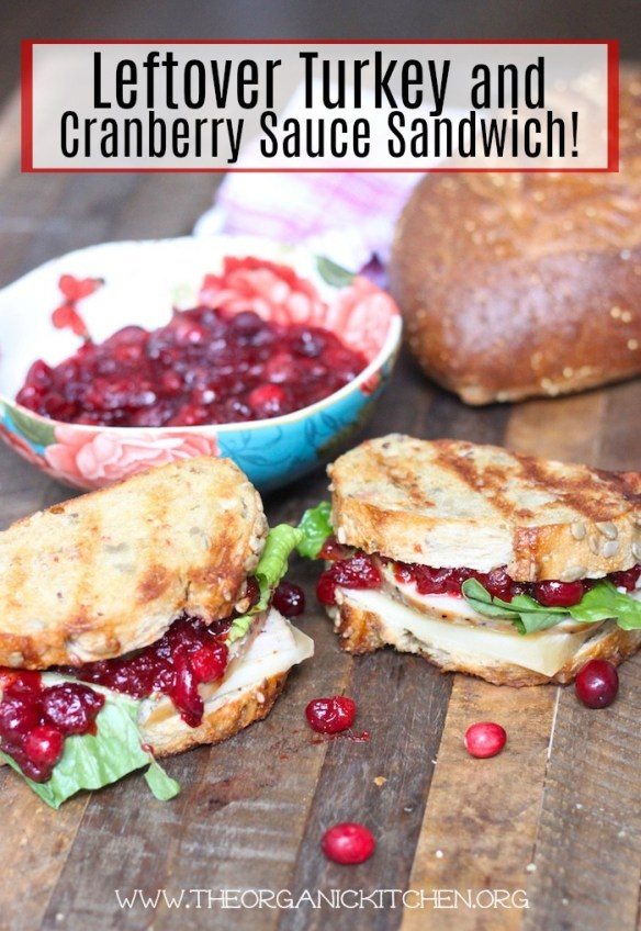 Leftover Turkey and Cranberry Sauce Sandwich!
