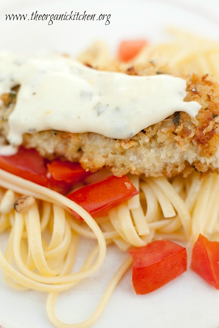 Parmesan Crusted Chicken Tenders Over Pasta with Cream Sauce
