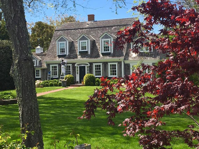 A Cape Cod style house with a maple tree on Martha's Vineyard!