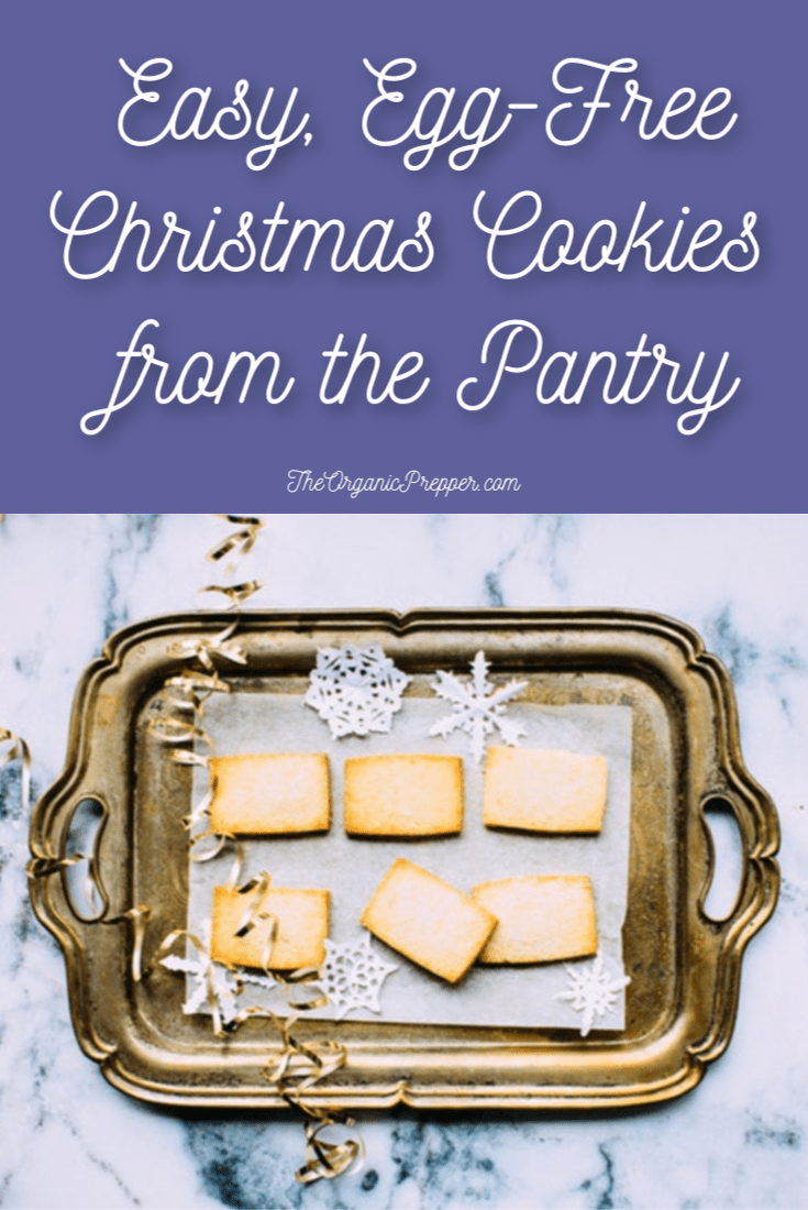 Are you down to the wire and need some holiday treats? Here are some simple, egg-free recipes for Christmas cookies that are right from the pantry