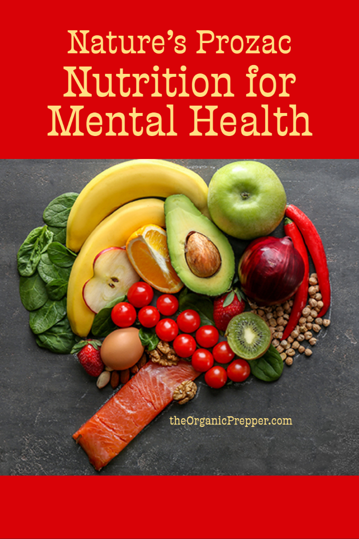 Nature\'s Prozac: Nutrition for Mental Health