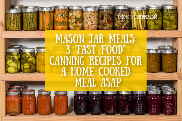 What could be better than coming home to a hearty supper you made from scratch - but without all the work? Check out these 3 pressure canning recipes to have a delicious, home-cooked meal in minutes.| The Organic Prepper