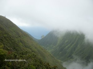 beautiful off grid molokai