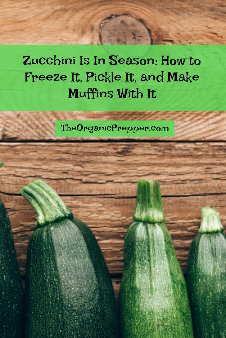 If you are a vegetable gardener, chances are that you're currently experiencing an abundance of zucchini. Here\'s what to do with it.