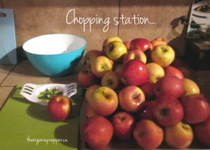 Apple chopping station