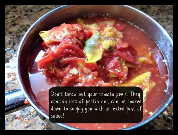 tomato peel sauce