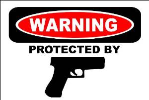 """Ferguson Cop Advises Residents to Get a Gun: """"We will not be able to protect you or your family"""""""