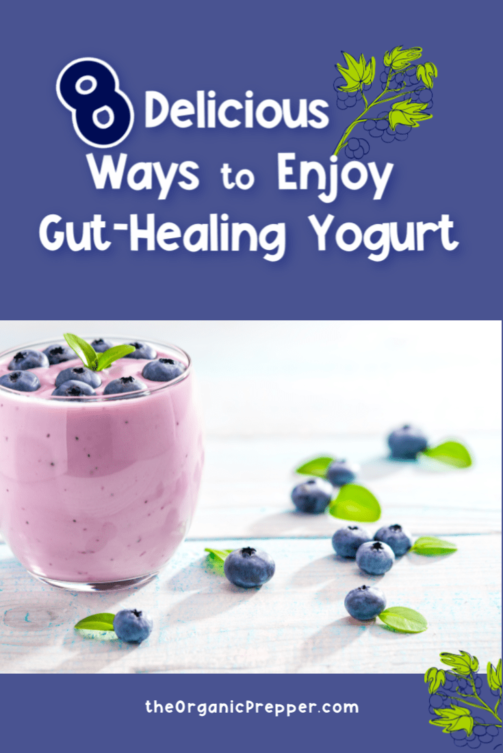 8 Delicious Ways to Enjoy Gut-Healing Yogurt