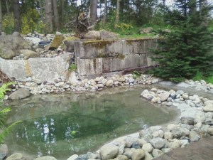 Prepper castle pond