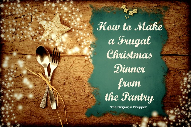 A frugal Christmas dinner...that doesn't sound like much fun, does it? Holiday meals have become a license to overspend, but it can be festive AND frugal.