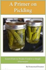 A Primer on Pickling