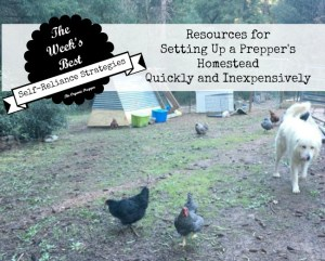 Resources for Setting Up a Prepper's Homestead Quickly and Inexpensively