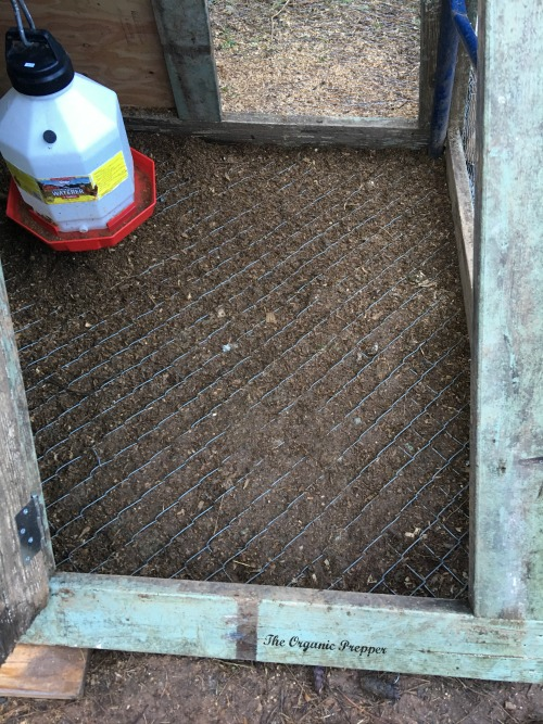 chicken coop floor