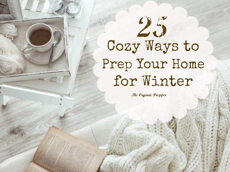 One of the best ways to brace yourselves for the onset of cold weather, winter storms, and potential power outages is to prep your home for the season.