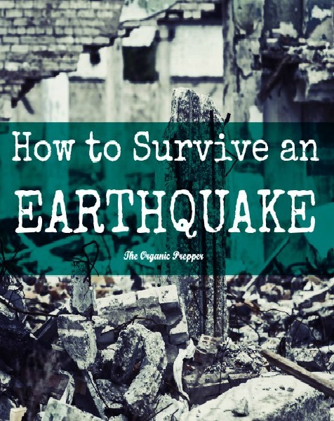 How to Survive an Earthquake (and Its Aftermath)