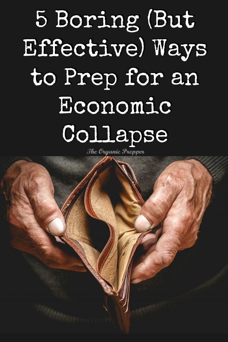These tips aren\'t one bit glamorous, but anyone can follow them. You\'ll be ready to survive an economic collapse - even if it\'s just a personal one.