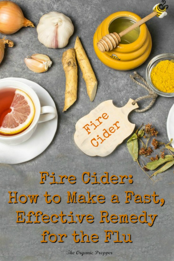 Got the flu? Fire cider is loaded with anti-inflammatory, immune-supporting, and decongestant herbs. It\'s super simple to make and the ingredients are easy to find.