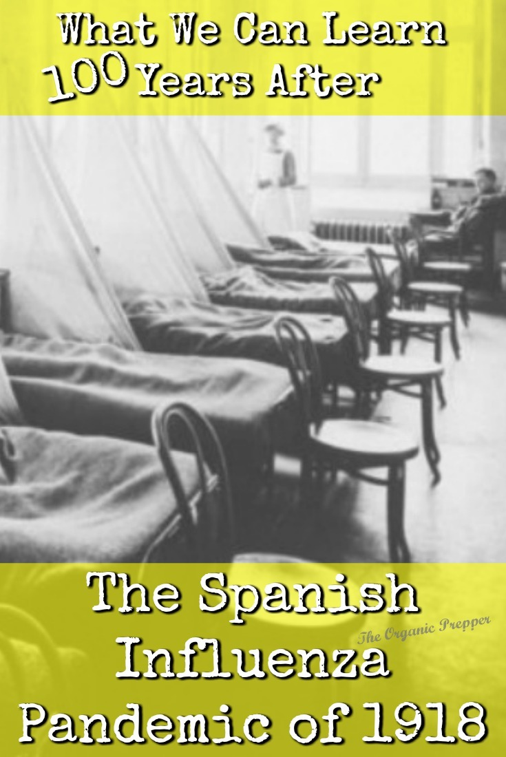 It has been 100 years since the Spanish flu infected 500 million people around the globe and wiped out an estimated 20-50 million of them. Here's what we can learn.