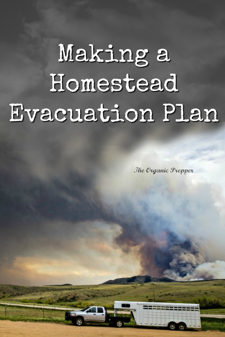 Even if you don\'t live in a wildfire zone, if you raise livestock, you need to have a homestead evacuation plan. Here are some things you need to think about.