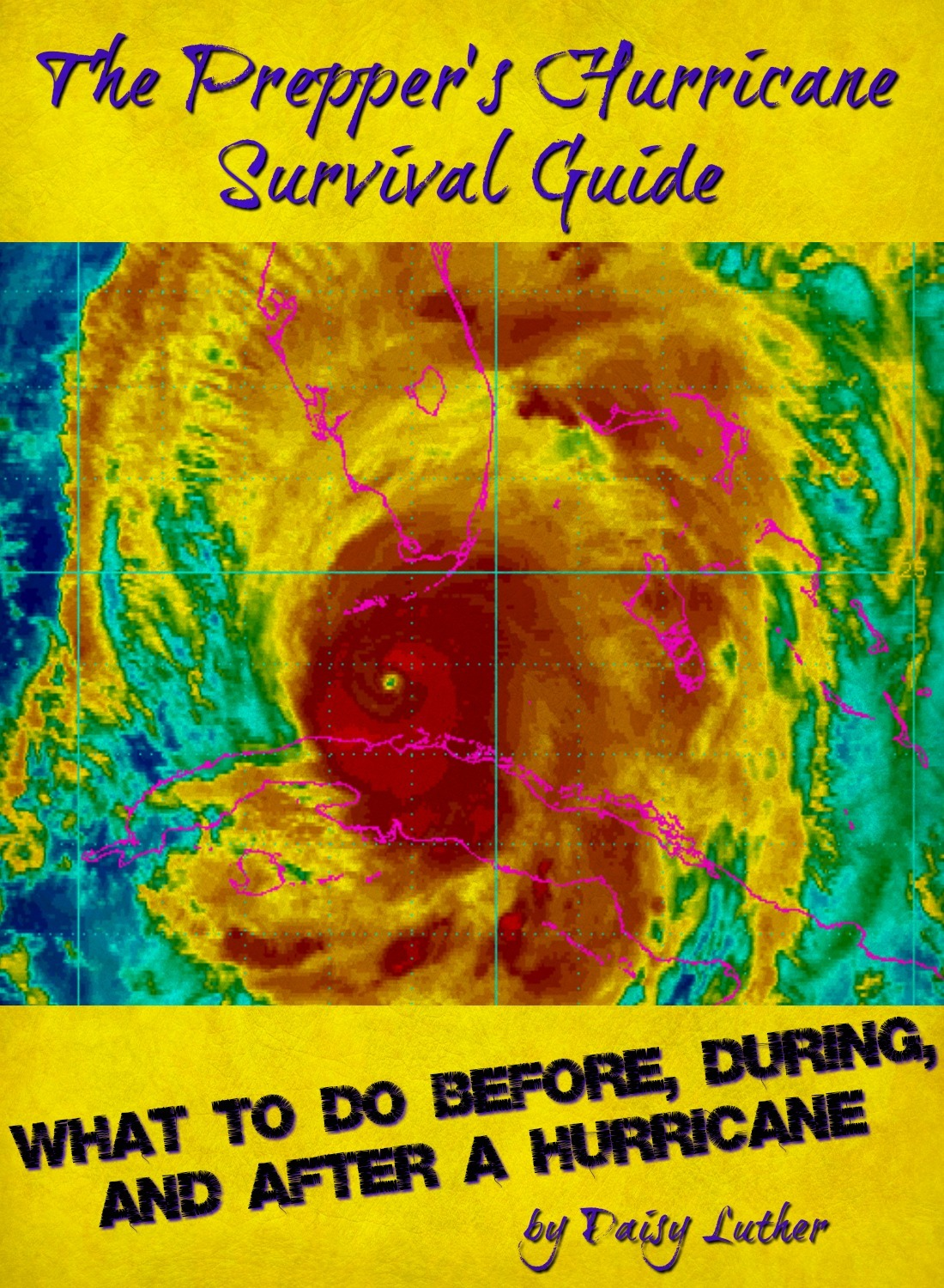 The Prepper's Hurricane Survival Guide