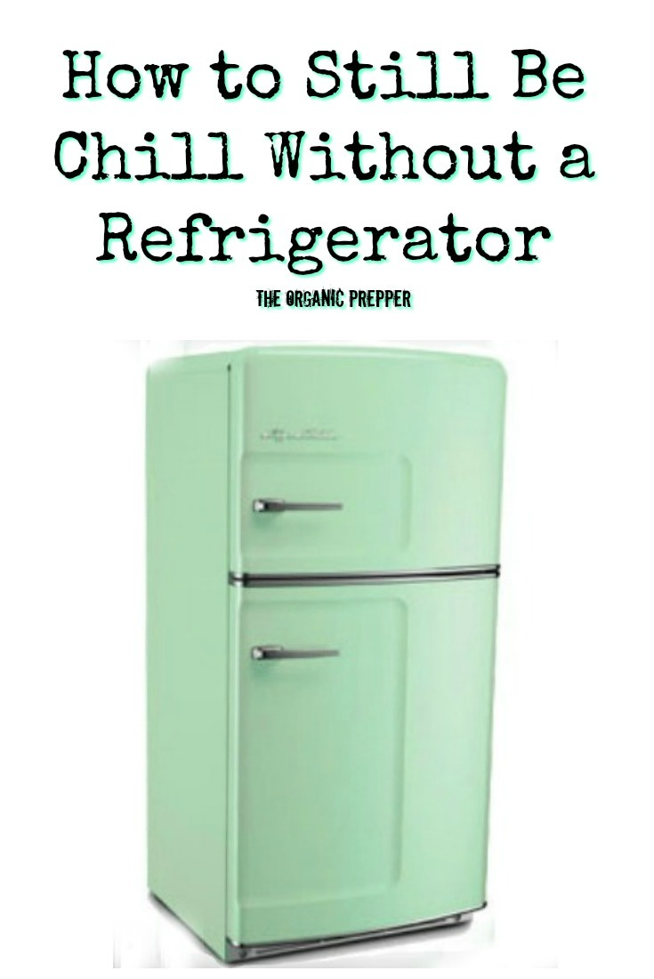 Going without a working refrigerator is NOT how anyone wants to spend their summer. Learn how to reduce the damage of a power outage on your fridge today! | The Organic Prepper