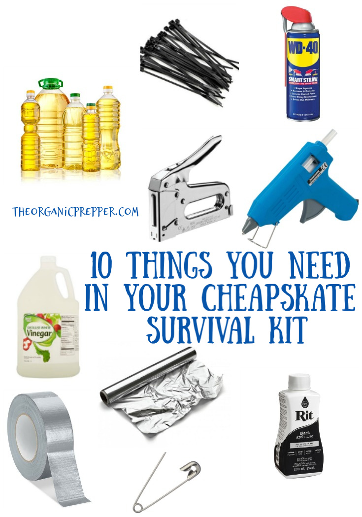 If you enjoy fixing, mending and MacGuyvering like any self-respectingCheapskate, you need a special survival kit just for your frugal activities