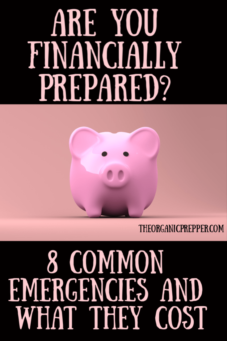 Are you financially prepared? Here are 8 common emergencies that can happen to anyone, along with what they might cost. | The Organic Prepper