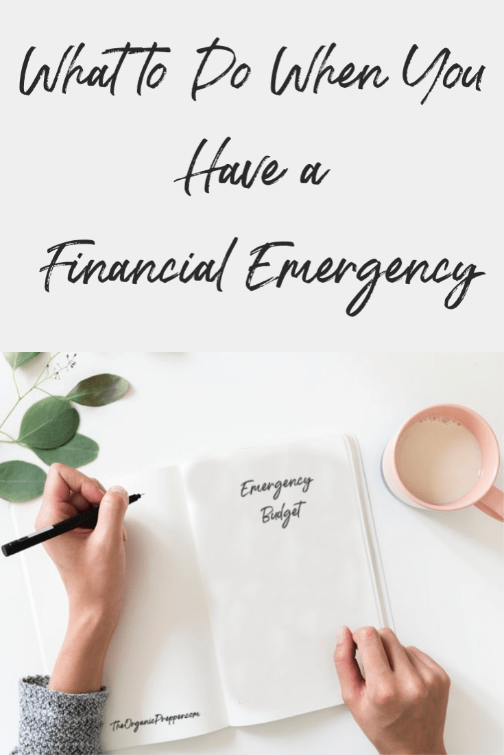 Are you facing a financial emergency? Maybe you lost your job or had an unexpected expense. Here\'s what to do when you\'re dealing with money problems. | The Organic Prepper