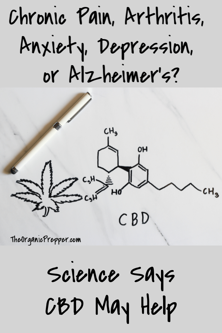 Chronic Pain, Arthritis, Anxiety, Depression, or Alzheimer\'s? Scientific research says that CBD may help these conditions. | The Organic Prepper