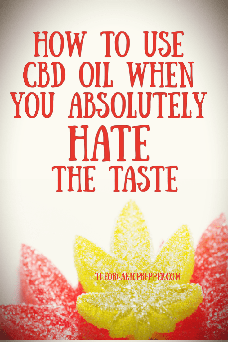 Do you love the benefits of CBD oil but absolutely hate the taste? Here are 5 ways to take it that are actually delicious.