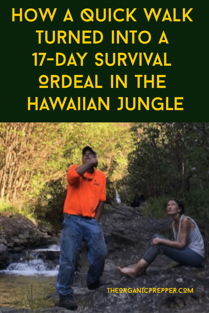 Here\'s the incredible story of a hiker who spent 17 days in a Hawaiian jungle. What can we learn from her survival ordeal? | The Organic Prepper
