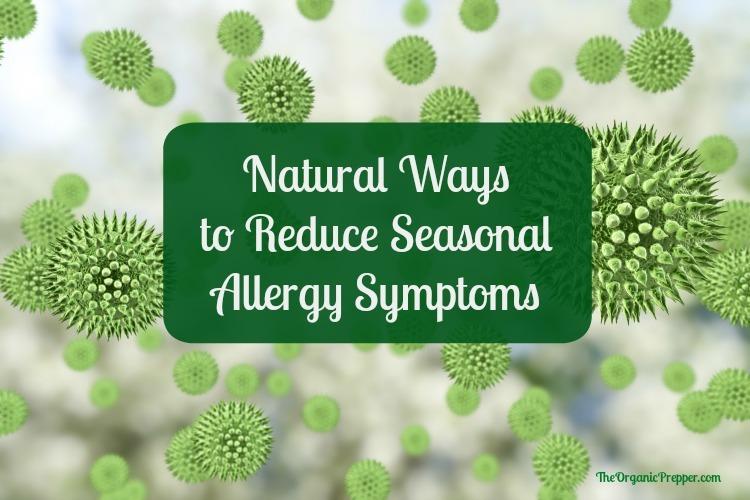 Natural Ways to Reduce Seasonal Allergy Symptoms