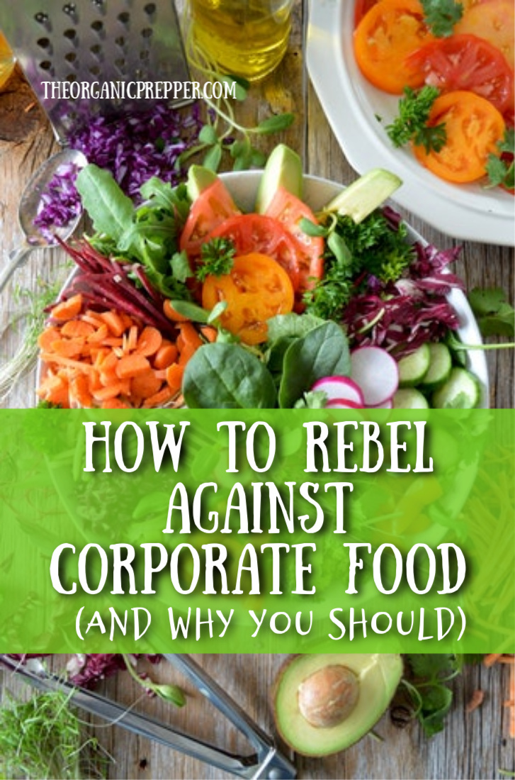 How to Rebel Against Corporate Food (and Why You Should)