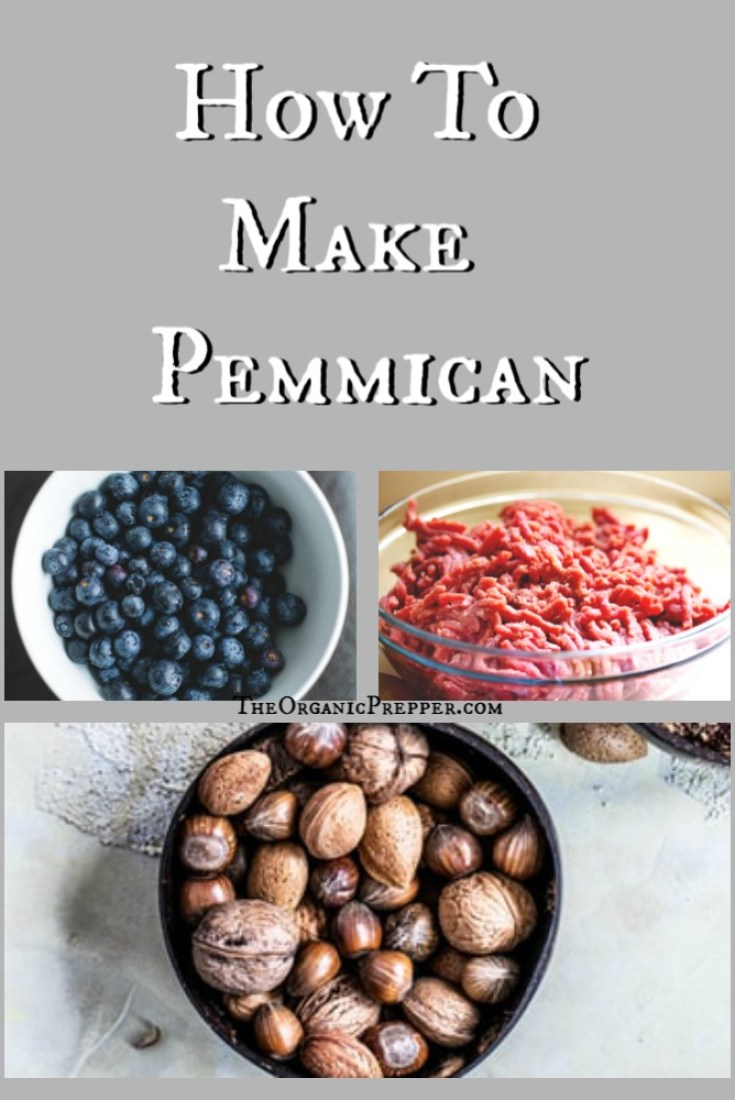 Often referred to as the ultimate survival food, pemmican is a combination of meat, fat, and berries that can be stored for extended periods of time.
