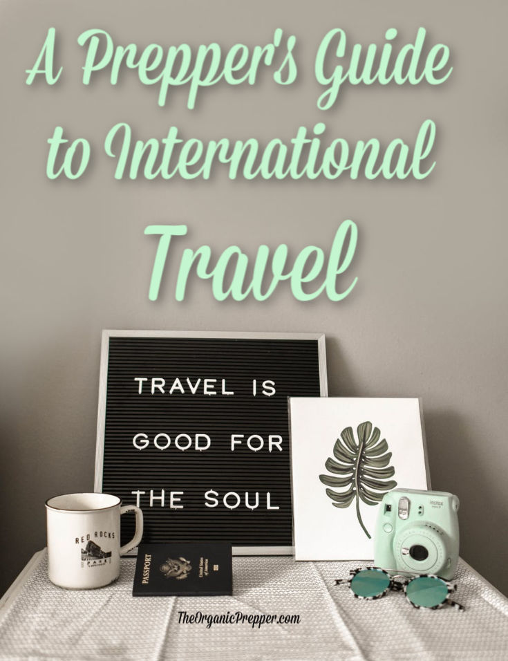 Are you traveling to another country for a vacation or a business trip? Here are some tips for those interested in preparedness and survival.   The Organic Prepper