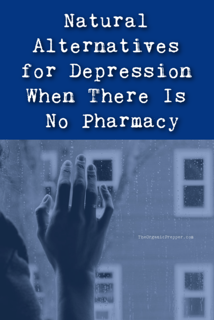 In an SHTF situation, pharmacies will not be available. This article covers alternative ways to manage depression where prescription drugs are not an option. The Organic Prepper