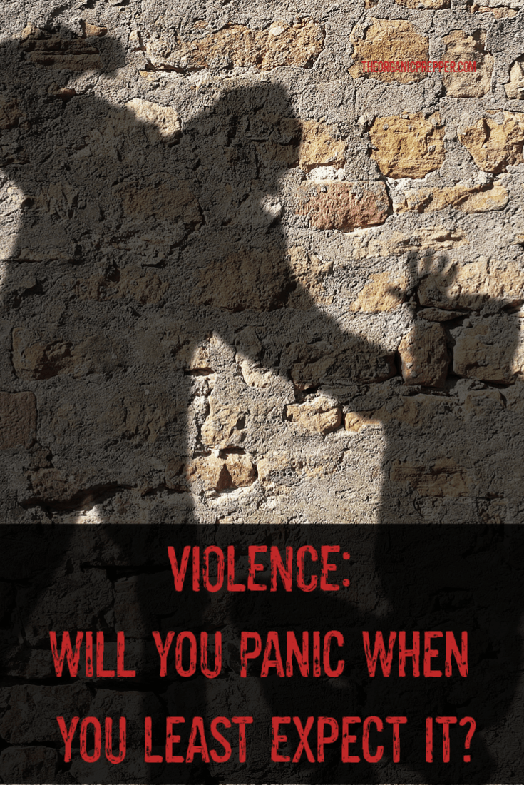 What would you do if you experienced or witnessed raw and brutal violence? Would you panic or would you be able to act? Here\'s how to prepare for it..| The Organic Prepper
