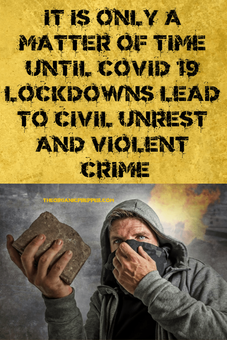 It's Only a Matter of Time Until COVID-19 Lockdowns Lead to Civil Unrest and Violent Crime