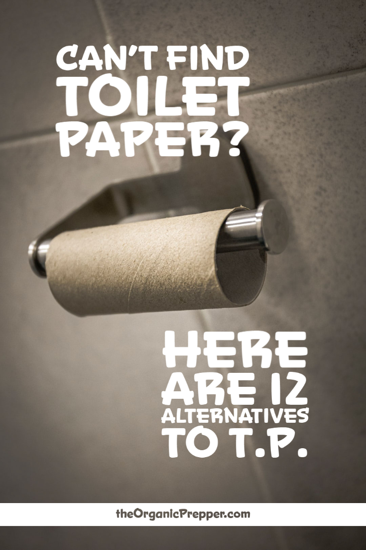Can\'t Find Toilet Paper? Here Are 12 Alternatives to TP