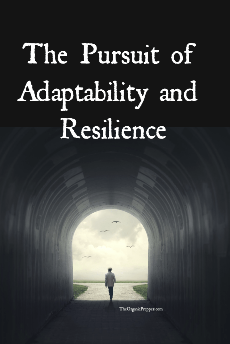 A lot of folks have a rigid, narrow view of preparedness and survival. But when you can be plunked down anywhere and make a life for yourself, you\'re better able to face other challenges too. Anyone can be more prepared to face adversity by increasing their adaptability and resilience. | The Organic Prepper #mindset #prepping #survival #adaptability
