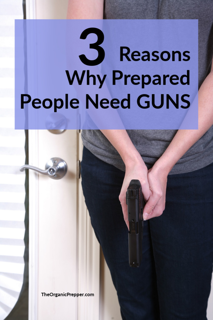 Firearms are a vital part of your home and personal defense plans. As things devolve in our country, it\'s important to understand why preppers need guns. | The Organic Prepper