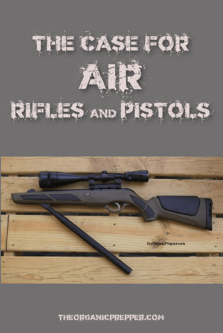 The Case for Air Rifles and Pistols